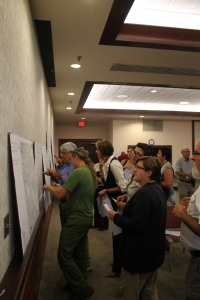 Economic Development Strategic Plan Public Meeting, mapping activity